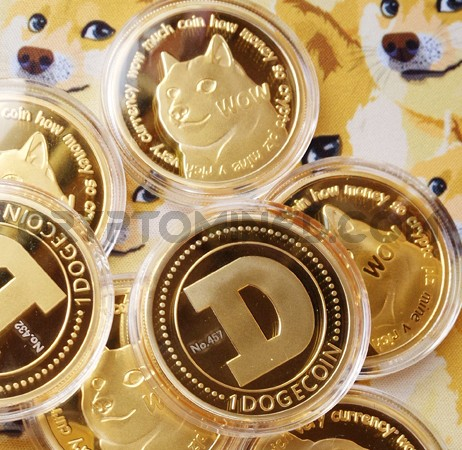 Novelty Gold Dogecoin Physical Copper Coin