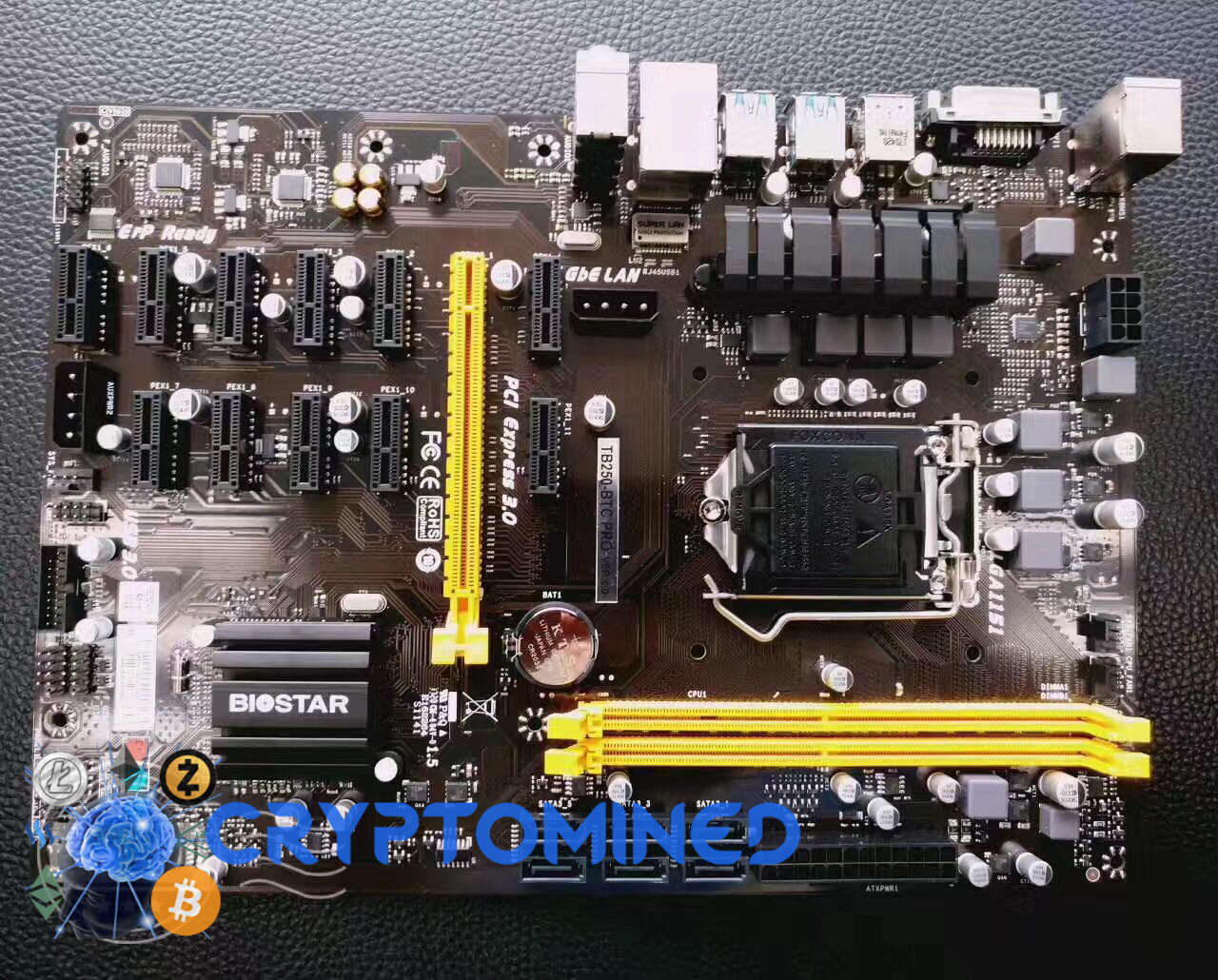 SUPX Limited Edition 12GPU MB